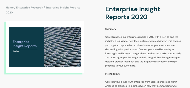 Enterprise Insight Report